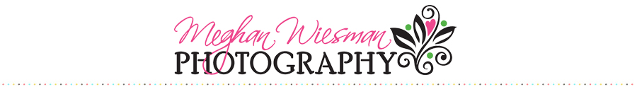 Meghan Wiesman Photography logo